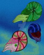 Early permian ammonites by avancna d19g83o-fullview