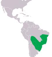 240px-Caiman latirostis Distribution.png
