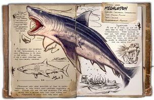 Dossier Megalodon