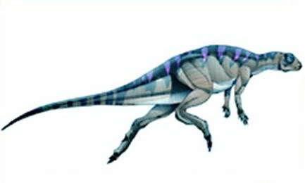 Fabrosaurus4