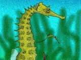 Hippocampus sarmaticus