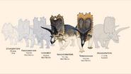 Navajoceratops sullivani and Terminocavus sealeyi