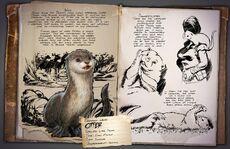 Dossier Otter