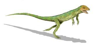 Eudibamus cursoris