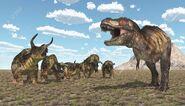 Nasutoceratops vs T-rex