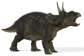 Diceratops 01 by 2ndecho-d5368jf