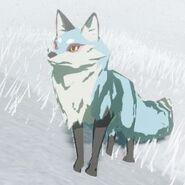 Snowcoat-fox