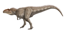 Life restoration of Giganotosaurus carolinii