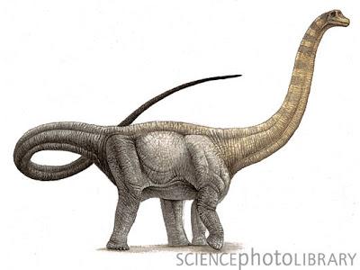 Hypselosaurus priscus dinosaur, artwork-SPL