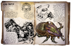 800px-Dung Beetle Dossier