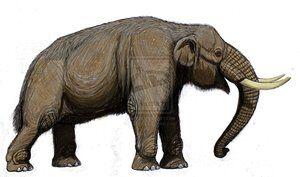 Haplomastodon | Dinopedia | Fandom