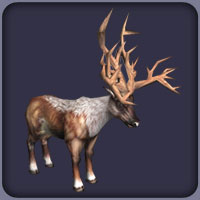 Bush-Antlered Deer