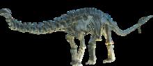 Apatosaurus Clean