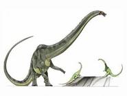 JPI Diplodocus