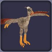 Protarchaeopteryx ZT2
