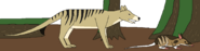 Realm of the thylacine by wildandnaturefan dc7view