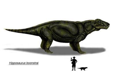 Hipposaurus K