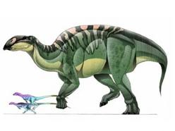 JPI Brachylophosaurus