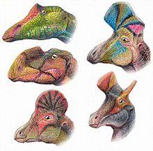 220px-Hadrosauroids