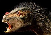 Pegomastax-africanus
