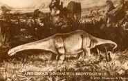WAMYA-Apatosaurus-700x447