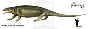 Aerosaurus wellesi by Theropsida