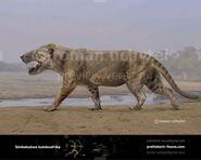 Simbakubwa-kutokaafrika-738x591