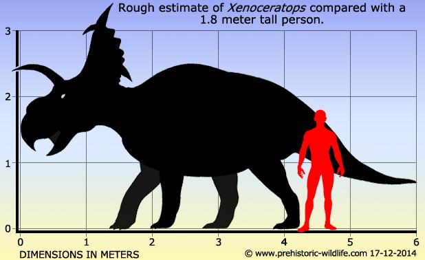 Xenoceratops/Gallery | Dinopedia | FANDOM powered by Wikia