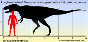 Nanuqsaurus-size
