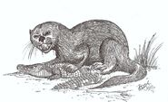 Enhydriodon the monster otter by hodarinundu d3cn9jo