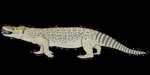 Estesia mongoliensis