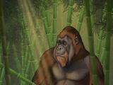 Gigantopithecus/Gallery