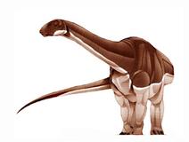 JPI Algoasaurus