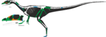 250px-Dracoraptor