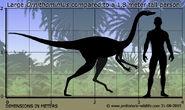 Ornithomimus-size