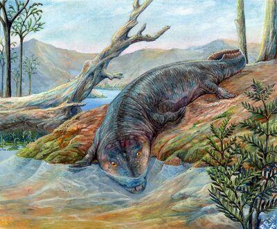 Labyrinthodontia