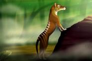 Thylacine by dj88 d41jklp