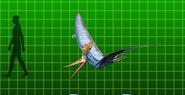 Pteranodon (side)