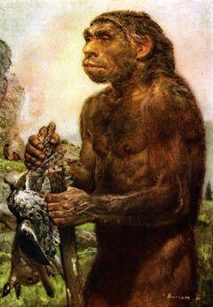 Neanderthal by zdenek burian 1950.jpg