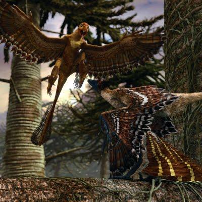 File:SnornithosaurusPD.jpg