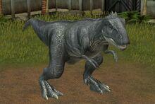 Majungasaurus-10