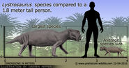 Lystrosaurus-size