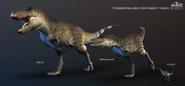 TyrannosaurusOntogeny