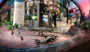 Jurassic miniture dinosaurs diorama display
