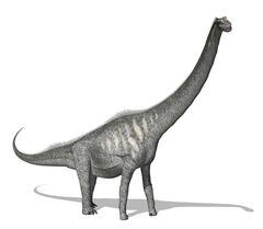 Sauroposeidon.jpg