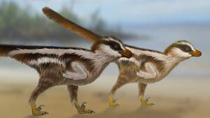 Smallest-dinosaur-tracks-5