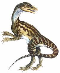 Staurikosaurus new