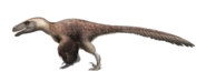 Utahraptor ostrommaysorum for wikipedia by fredthedinosaurman-dbq2uyf