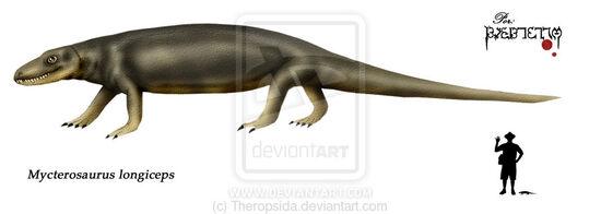 Mycterosaurus longiceps by Theropsida