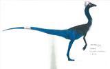 Ornithomimus concept art.jpg